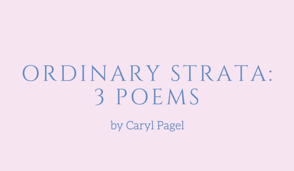 Ordinary Strata, three poems by Caryl Pagel