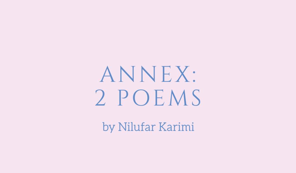 Annex, two poems by Nilufar Karimi